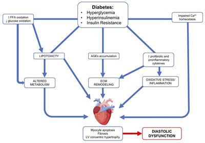current diabetes reviews impact factor 2015
