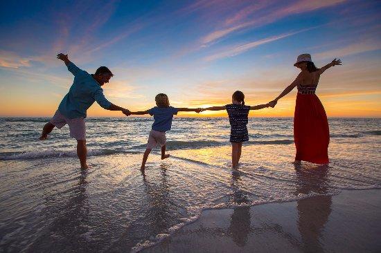 tradewinds st pete beach reviews