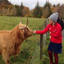 heart of scotland tours reviews